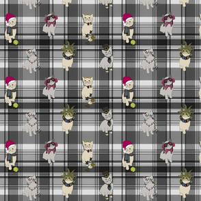 double cats on plaid square - greyscale