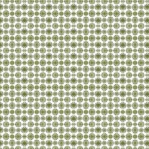 Green Bladderwrack