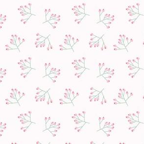 Berry Star coordinate Flamingo