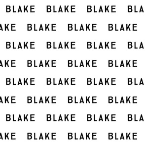 blake fabric