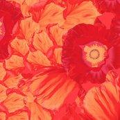 Rrdancing-poppy-group_shop_thumb