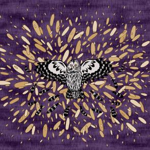 Owl and Fragmented Starburst