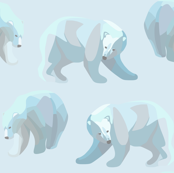 Glacier Bears