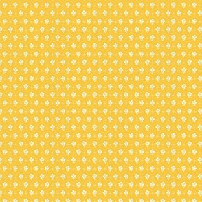 Dioton - Patapon Jaune soleil