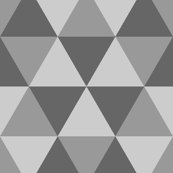 06965583 : equilateral x3 : grey