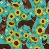 R6704235_rkelpie_red_and_tan_sunflowers-1_shop_thumb