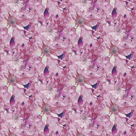 Rrgimp-ssd-clematis-3-posterized-edges-transparency-r-bkgd-cloned-10x9-img_1592-001_shop_preview