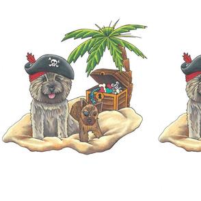 Pirate cairns