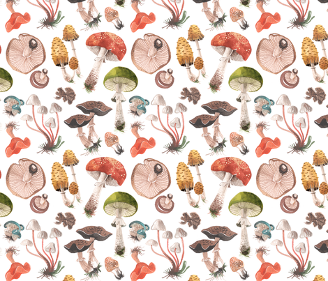 MUSHROOMS fabric by oanabefort on Spoonflower - custom fabric