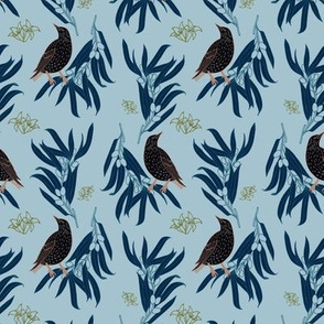 Starling + Olive in Light Blue