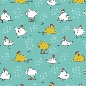 chickens aqua