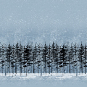 fir trees in a snowy winter night