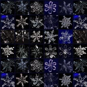Snowcatcher Real Snowflakes III