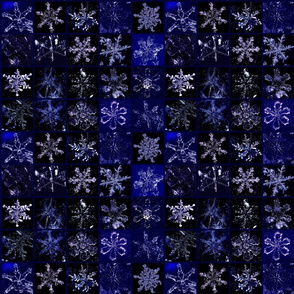 Snowcatcher Real Snowflakes Blue Too