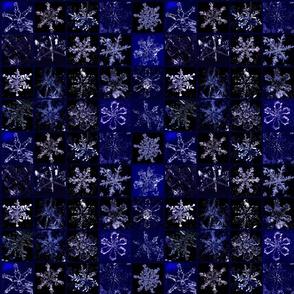Snowcatcher Real Snowflakes Blue Too