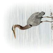 Rtea-towel_heron1_shop_thumb