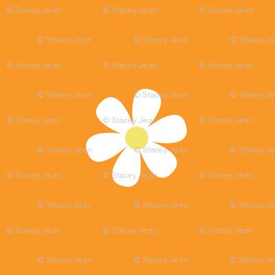 Orange Daisy Dots