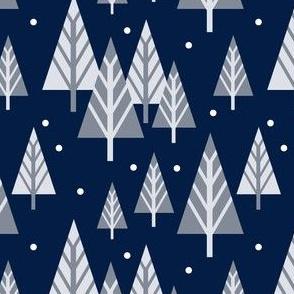 SnowatNight_02