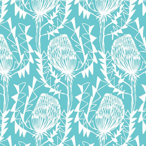 BIRDS_NEST_BANKSIA_2TURQUOISE-SF