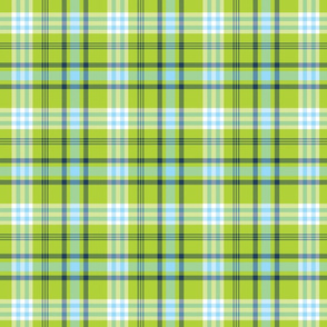 Lime Green and Aqua Blue Plaid