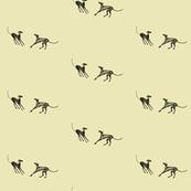 young greyhounds