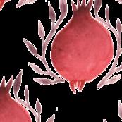 Persian Pomegranate 2