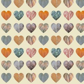 9 hearts Pumpkin skins