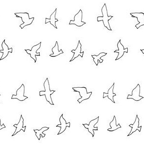 outlined flying birds