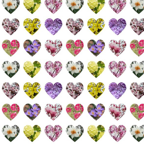 9 hearts spring flowers