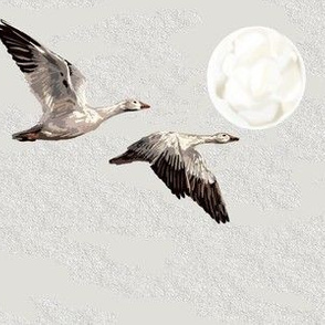 Wild Snow Geese - Arctic Moon - Large Scale