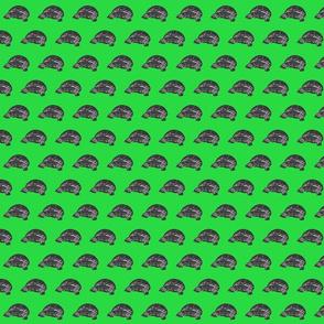 Gopher Tortoise green