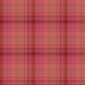 Rspiced-plaid-coordinate-cupcakes-by-floweryhat_shop_thumb