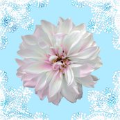 Rrustic_dahlia_doily_white_skyblue_shop_thumb
