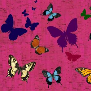 butterflies on cork