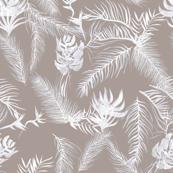 white tropical