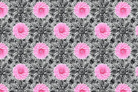 Rrustic_pink_dahlia_black_lace_white_shop_preview