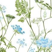 Queen-anne-lace-blue-flat_shop_thumb