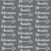Radventure-awaits-with-dark-background_shop_thumb