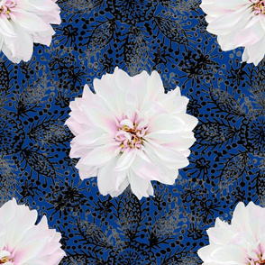 Rustic white Dahlia on black lace (navy)