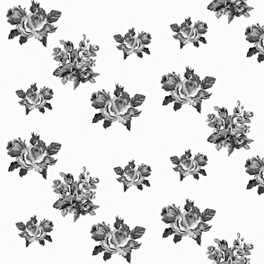 Vintage Floral Roses in Black and White