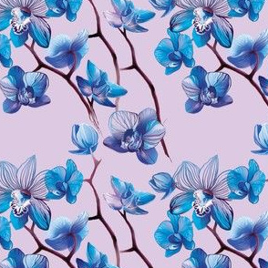 Orchid Blue and Lilac