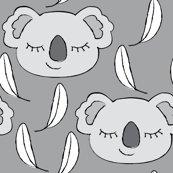 Rkoalas-grey-and-white-on-charcoal_shop_thumb