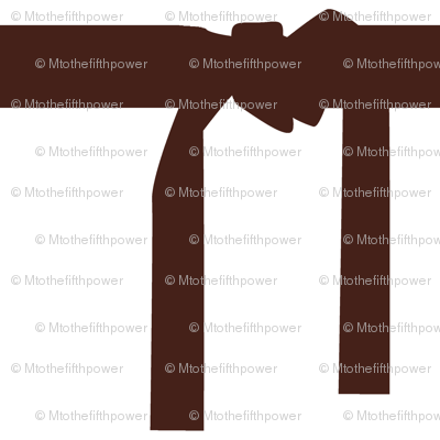 Six Inch Martial Arts Brown Belt on White