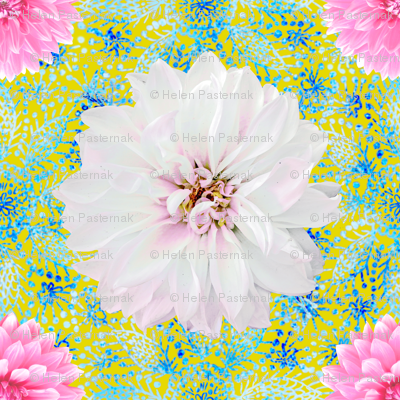 Rustic pink & white Dahlias on blue lace (yellow)