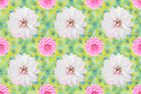 Rustic pink & white Dahlias on blue lace (yellow) fabric by helenpdesigns on Spoonflower - custom fabric
