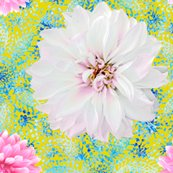 Rrustic_pink-white_dahlias_blue_lace_yellow_shop_thumb