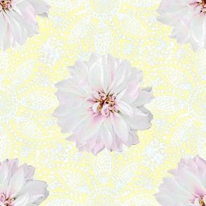 Rustic white Dahlia on white lace (yellow)