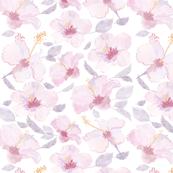 Lavenderhibiscus-01