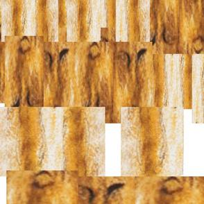 texture faces