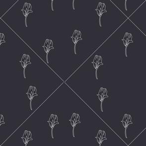 Carnation buds